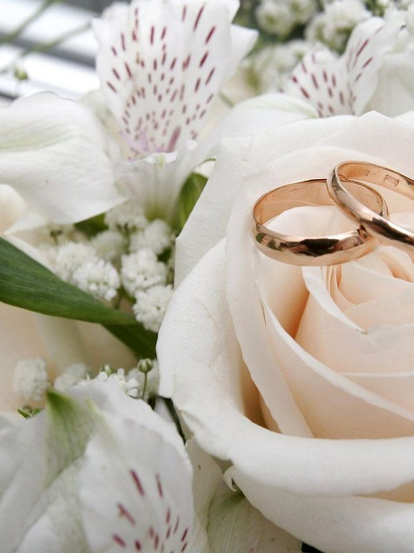 The Perfect Wedding Blog