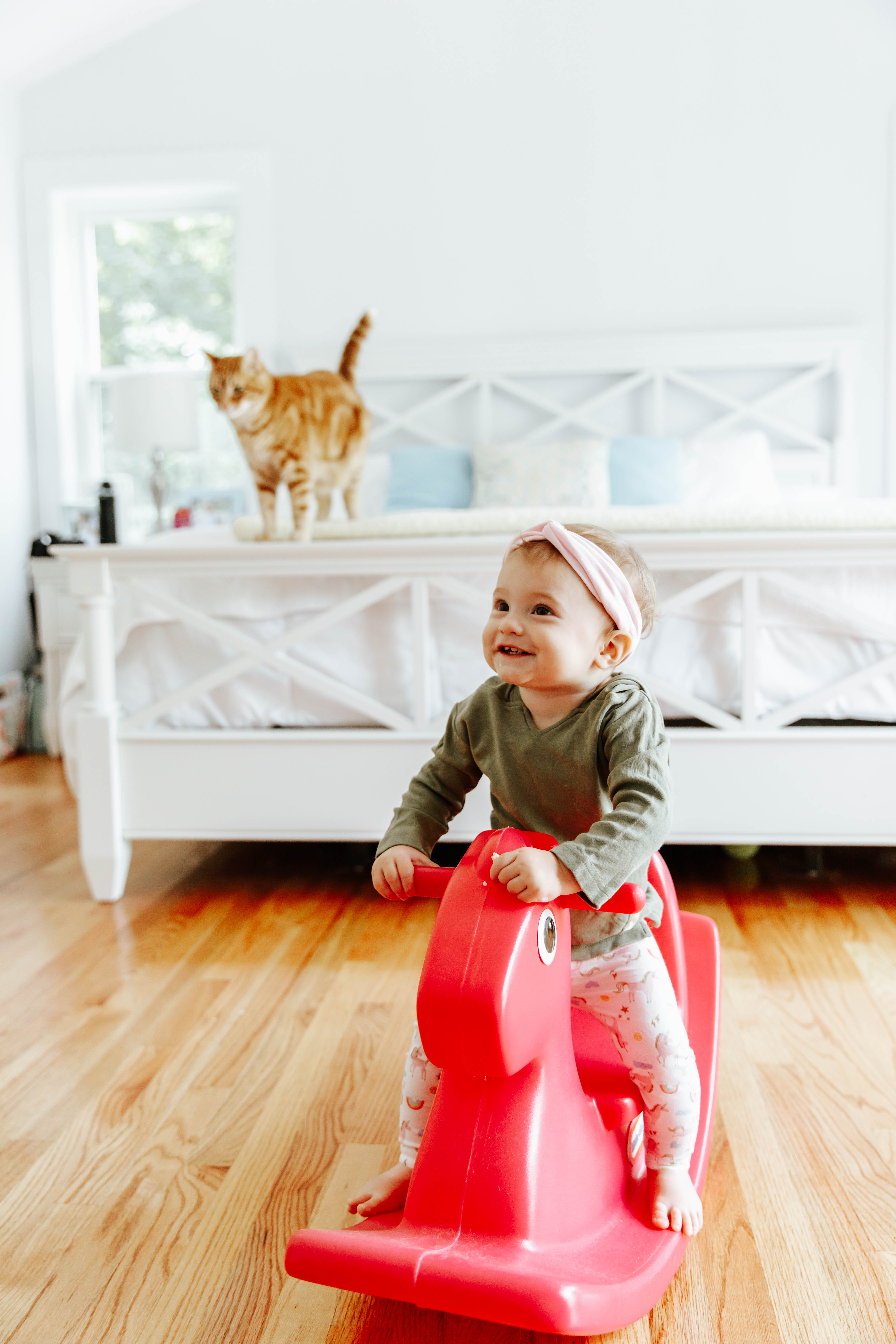 How to Create a Safe Space for Your Baby and Pet