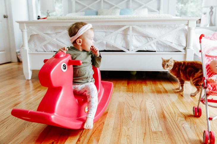 Baby Playing on Toy Horse with cat the in Background