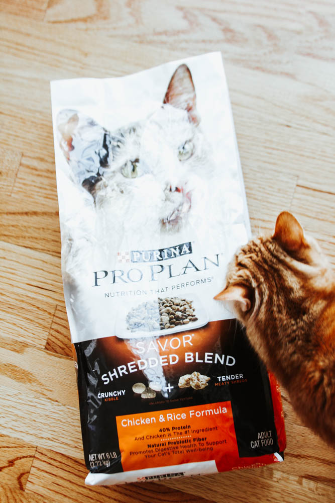 Purina Save a Fortune Event