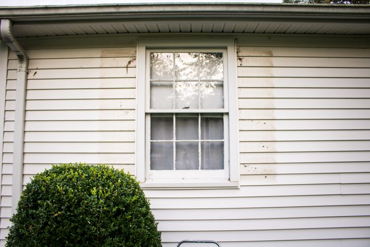 Exterior Shutter Removal
