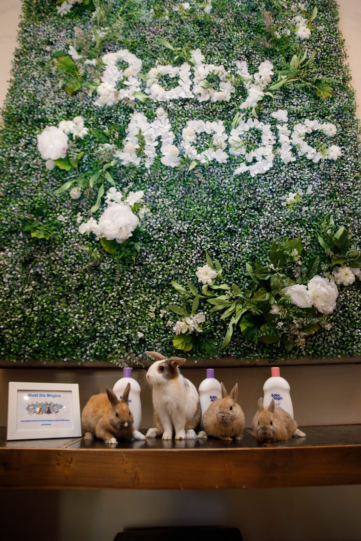 Bunnies standing on table under Baby Magic Floral Wall - Baby Magic launches a New Product Line with Wholesome Clean Ingredients by Caitlin Houston from Confessions of a Northern Belle