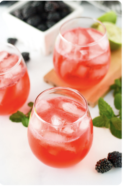 summer cocktail blackberry mint and gin tonic