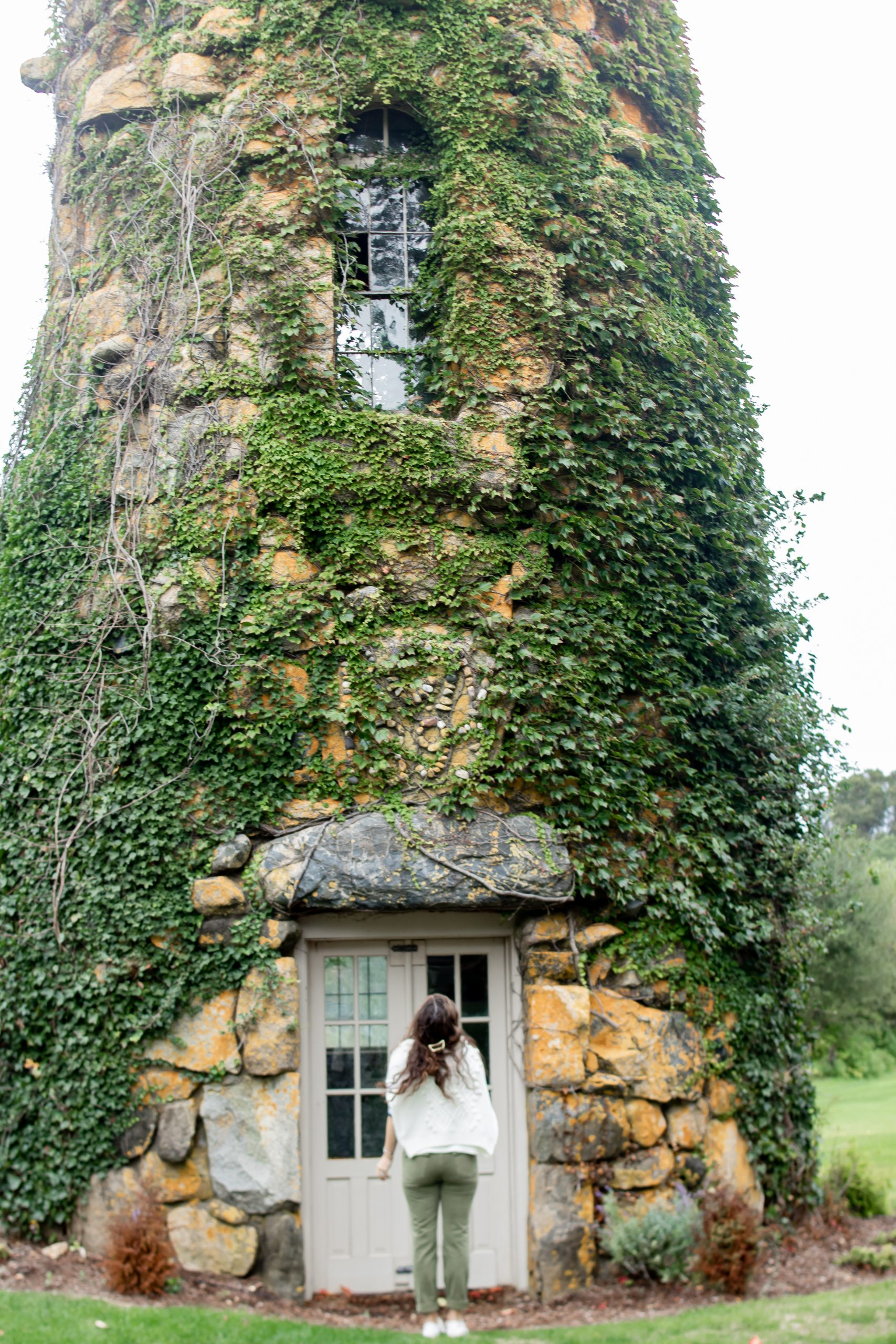 historical Vine covered water tower